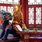 Nitro9 Selects Carl Wu for China Distributor